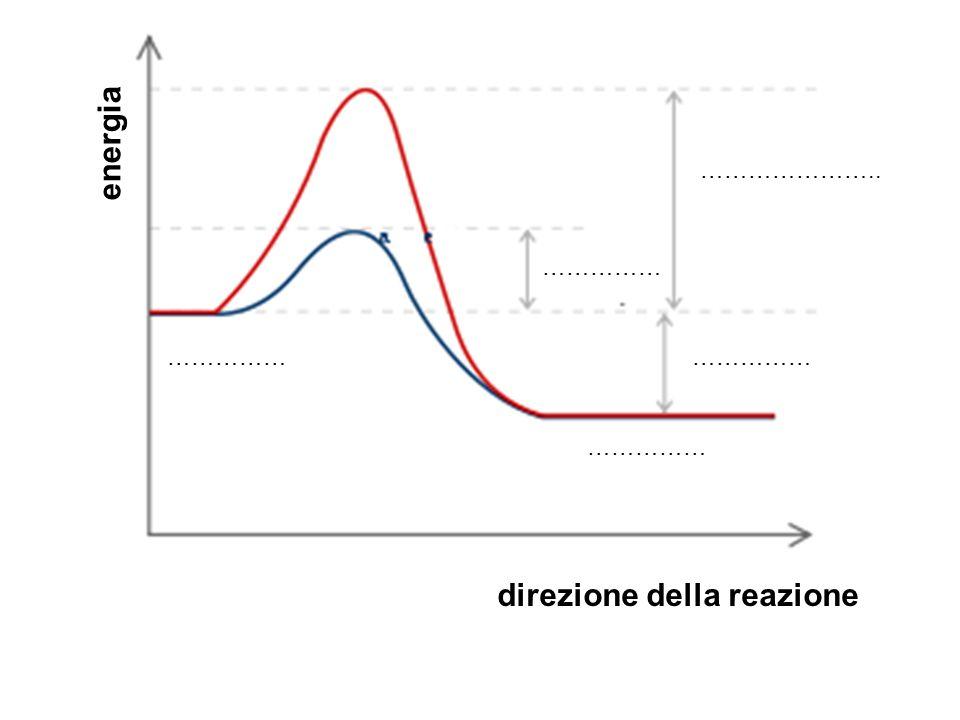 energia direzione della reazione …………… ………………….. ……………