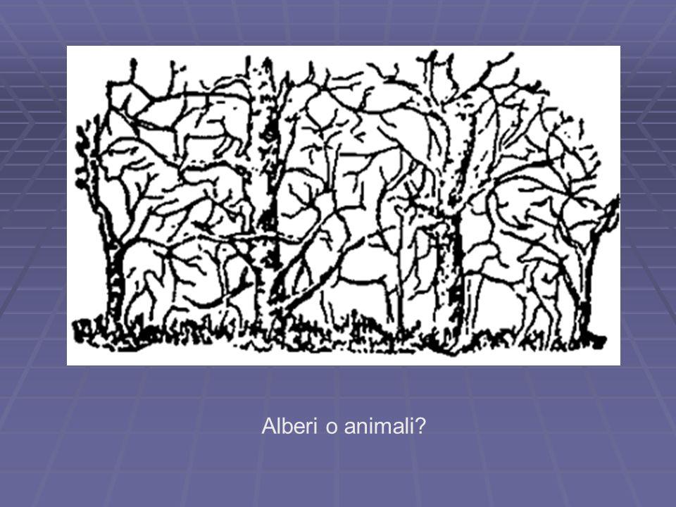 Alberi o animali?