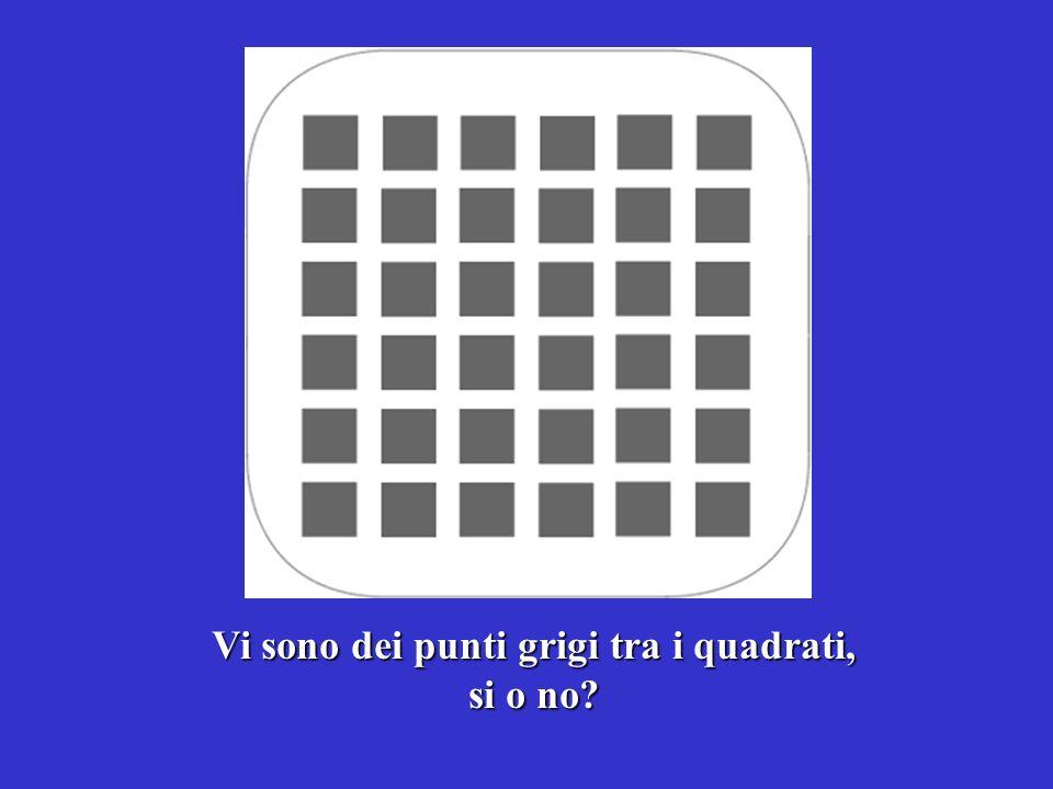 Vi sono dei punti grigi tra i quadrati, si o no?