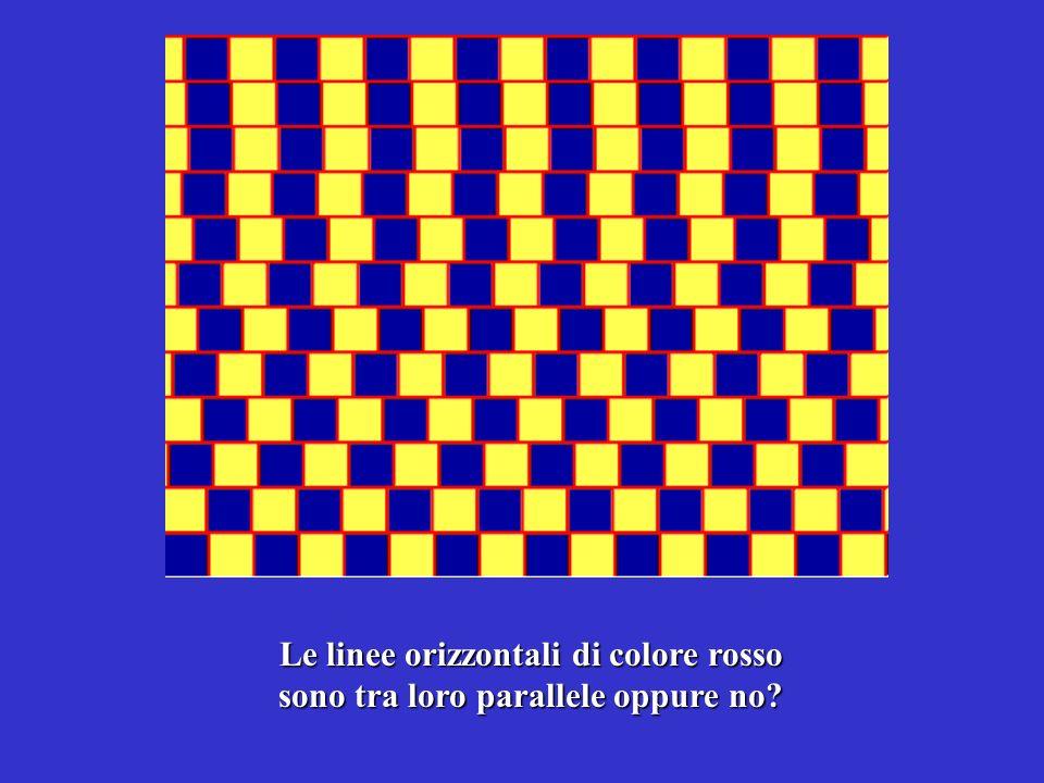 Le linee orizzontali di colore rosso sono tra loro parallele oppure no?