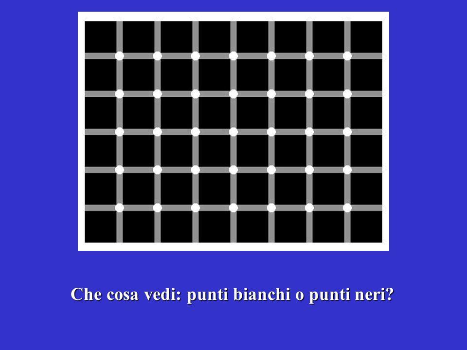 Puoi avere limpressione che i punti siano in parte bianchi e in parte neri; in realtà sono solo bianchi
