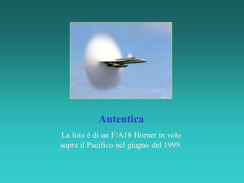 La foto è di un F/A18 Hornet in volo sopra il Pacifico nel giugno del 1999.