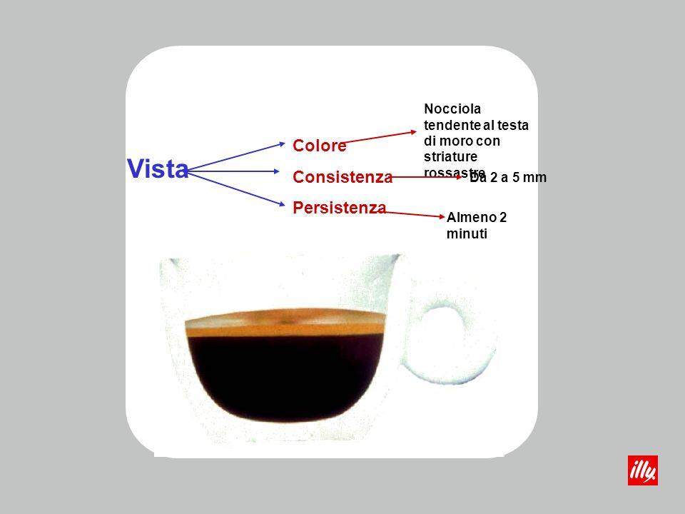 Vista ColoreConsistenzaPersistenza Il colore della schiuma è prodotto dalla caramellizzazione degli zuccheri durante la torrefazione e da alcuni polifenoli imbruniti per lossidazione provocata dal riscaldamento La compattezza,la finezza della grana e la quantità della schiuma sono date da proteine, grassi, zuccheri ed altre sostanze colloidali emulsionate durante la preparazione dai gas contenuti allinterno delle cellule Il tempo che una schiuma compatta a maglie strette e occhiatura fine impiega a disgregarsi