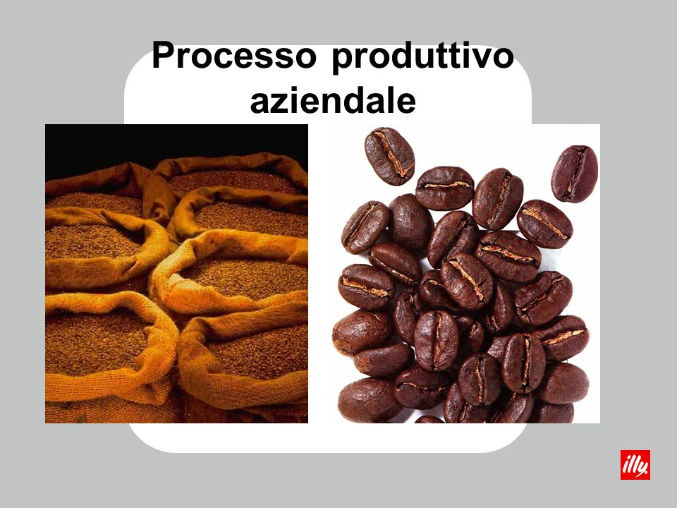 Acquisto dei lotti di caffè Il caffè verde può essere acquistato dal torrefattore su descrizione del lotto o dietro presentazione fisica del campione da analizzare e controllare.