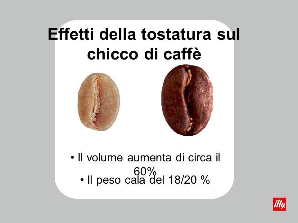 Effetti della tostatura sul chicco di caffè Durante la fase iniziale -> fenomeni endotermici (metà del tempo totale, temperature fino a 160°C) Nella fase finale -> fenomeni esotermici (reazioni pirolitiche tra 190°C e 210°C) successivamente di nuovo endotermico e poi esotermico (scoppiettio del chicco di caffè) terminando così il processo di tostatura