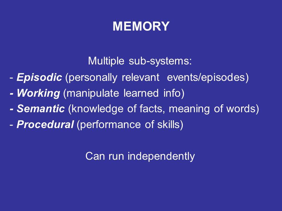 MEMORY PROCESS Sensations Sensations Sensations Sensations Immediate Memory Short Term Memory Long Term Memory 1.