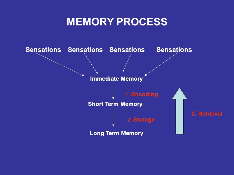 MEMORY WORSENING Stress/anxiety/depression/ sleep deprivation Medications (hypnotics, narcotics, anti-cholinergics, anti-histamines) Medical conditions (hypertension, diabetes, thyroid disfunction, sleep apnea, etc.) Alcohol, drugs