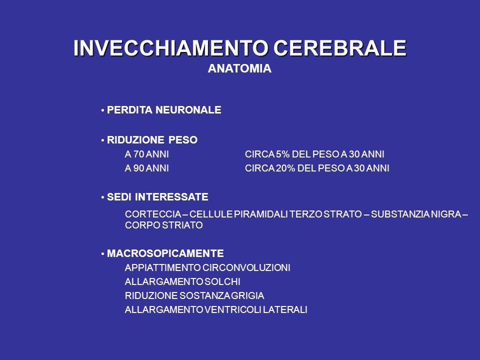 INVECCHIAMENTO CEREBRALE INVECCHIAMENTO CEREBRALE ANATOMIA PERDITA NEURONALE RIDUZIONE PESO A 70 ANNICIRCA 5% DEL PESO A 30 ANNI A 90 ANNICIRCA 20% DEL PESO A 30 ANNI SEDI INTERESSATE CORTECCIA – CELLULE PIRAMIDALI TERZO STRATO – SUBSTANZIA NIGRA – CORPO STRIATO MACROSOPICAMENTE APPIATTIMENTO CIRCONVOLUZIONI ALLARGAMENTO SOLCHI RIDUZIONE SOSTANZA GRIGIA ALLARGAMENTO VENTRICOLI LATERALI