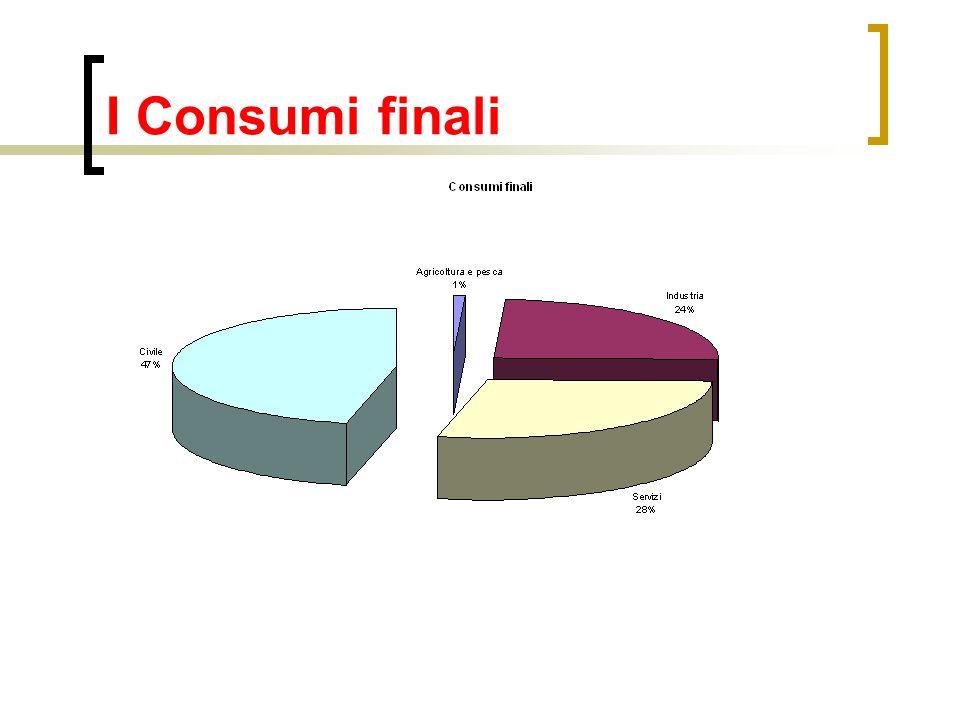 I Consumi finali