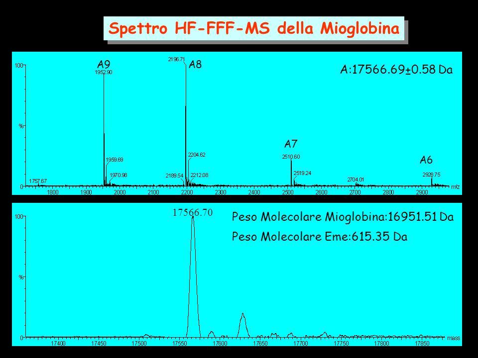 Spettro HF-FFF-MS della Mioglobina A9A8 A7 A6 17566.70 A:17566.69±0.58 Da Peso Molecolare Mioglobina:16951.51 Da Peso Molecolare Eme:615.35 Da