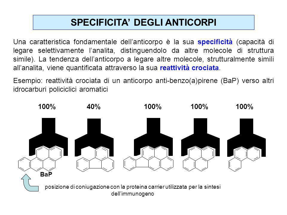 SPECIFICITA DEGLI ANTICORPI Una caratteristica fondamentale dellanticorpo è la sua specificità (capacità di legare selettivamente lanalita, distinguen
