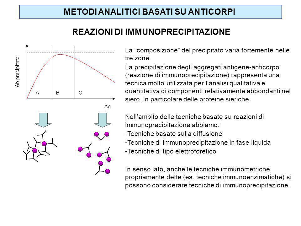 REAZIONI DI IMMUNOPRECIPITAZIONE La composizione del precipitato varia fortemente nelle tre zone. La precipitazione degli aggregati antigene-anticorpo