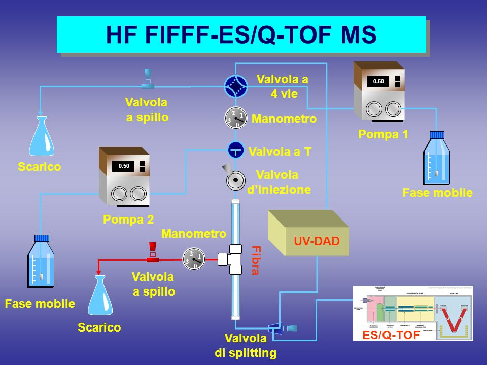 HF FlFFF-ES/Q-TOF MS Fase mobile Scarico Valvola a 4 vie Valvola a T 0 1 2 3 Scarico Valvola diniezione Valvola a spillo Fase mobile 0.7 5 0.50 Pompa