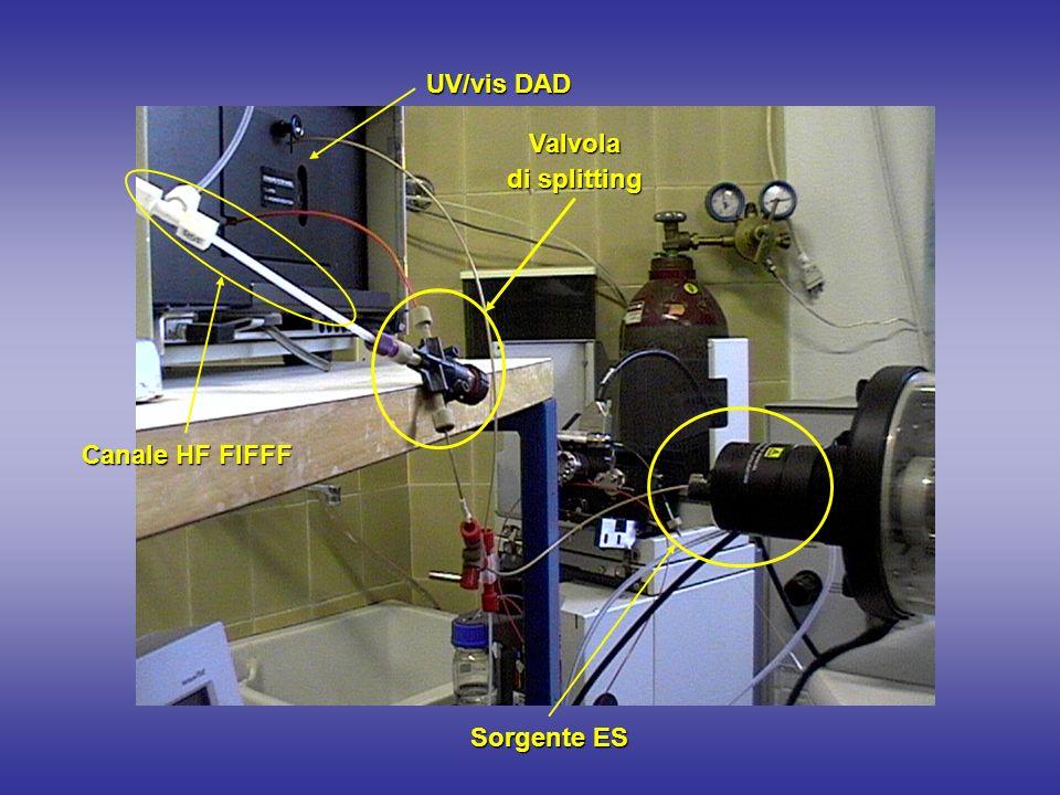 Canale HF FlFFF Valvola di splitting Sorgente ES UV/vis DAD