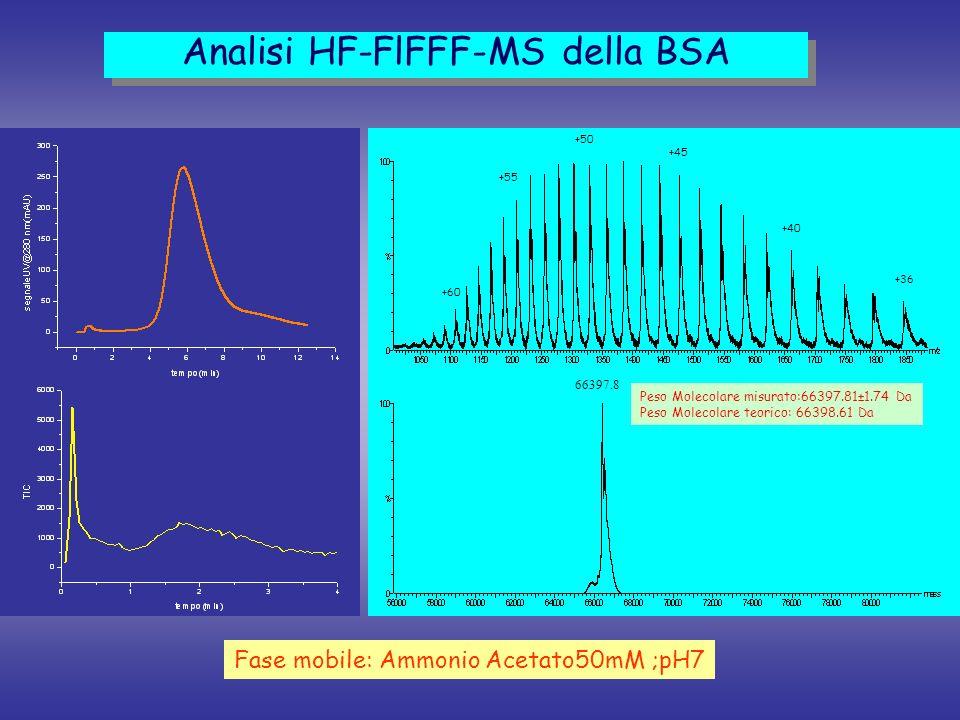 +55 +50 +45 +40 +36 +60 66397.8 Peso Molecolare misurato:66397.81±1.74 Da Peso Molecolare teorico: 66398.61 Da Analisi HF-FlFFF-MS della BSA Fase mobi