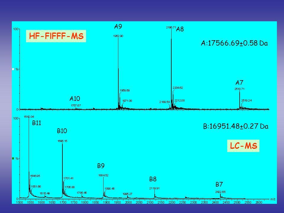 B11 B10 B9 B8 B7 A10 A9 A8 A7 A:17566.69±0.58 Da B:16951.48±0.27 Da HF-FlFFF-MS LC-MS