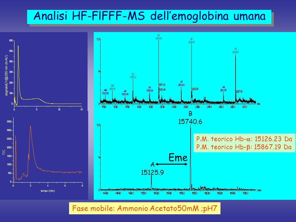 A 15125.9 B 15740.6 P.M. teorico Hb- : 15126.23 Da P.M. teorico Hb- : 15867.19 Da Eme Analisi HF-FlFFF-MS dellemoglobina umana Fase mobile: Ammonio Ac
