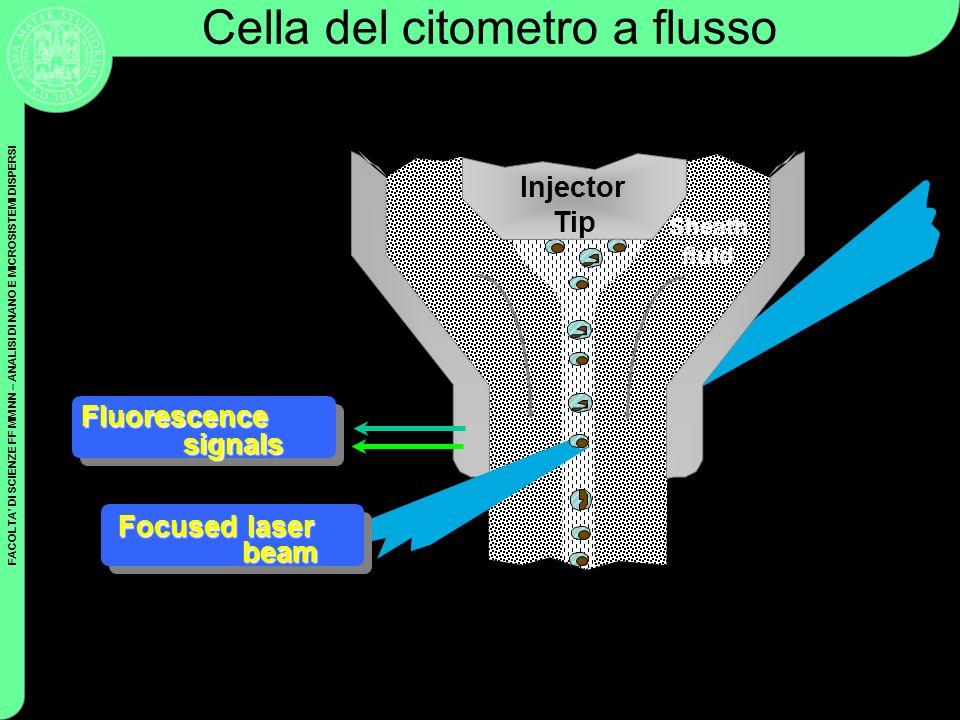 FACOLTA DI SCIENZE FF MM NN – ANALISI DI NANO E MICROSISTEMI DISPERSI Coulter Cytometry Cella del citometro a flusso Injector Tip Fluorescence signals