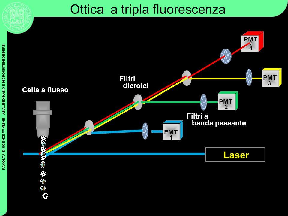 FACOLTA DI SCIENZE FF MM NN – ANALISI DI NANO E MICROSISTEMI DISPERSI Coulter Cytometry PMT Filtri dicroici Filtri a banda passante Ottica a tripla fl