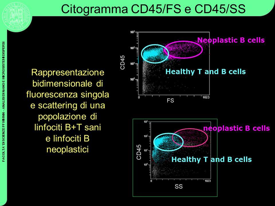 FACOLTA DI SCIENZE FF MM NN – ANALISI DI NANO E MICROSISTEMI DISPERSI Neoplastic B cells Healthy T and B cells CD45 SS Healthy T and B cells neoplasti