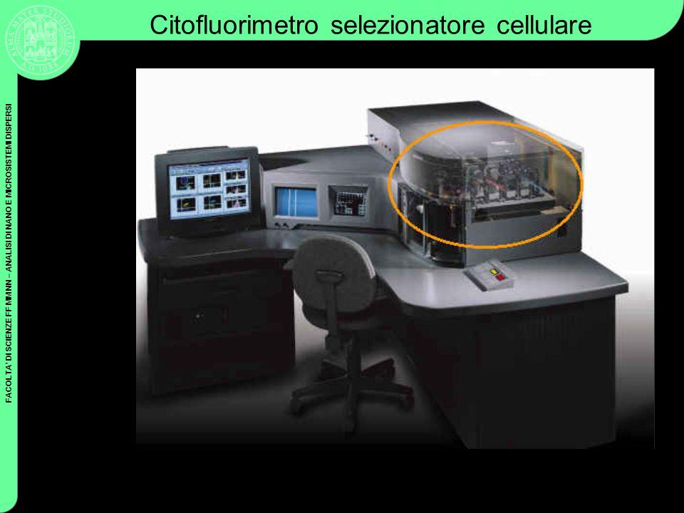 FACOLTA DI SCIENZE FF MM NN – ANALISI DI NANO E MICROSISTEMI DISPERSI Coulter Cytometry Citofluorimetro selezionatore cellulare