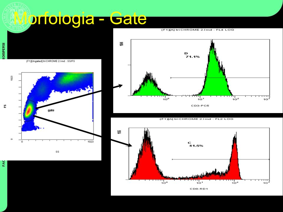 FACOLTA DI SCIENZE FF MM NN – ANALISI DI NANO E MICROSISTEMI DISPERSI Coulter Cytometry Morfologia - Gate