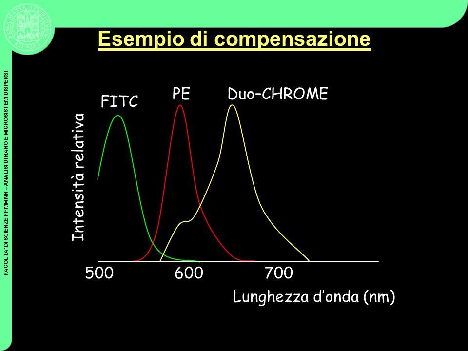 FACOLTA DI SCIENZE FF MM NN – ANALISI DI NANO E MICROSISTEMI DISPERSI Esempio di compensazione Lunghezza donda (nm) Intensità relativa FITC PEDuo–CHRO