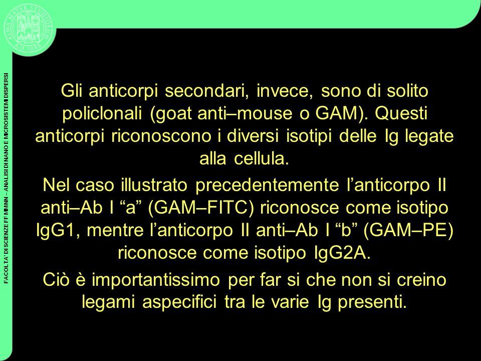 FACOLTA DI SCIENZE FF MM NN – ANALISI DI NANO E MICROSISTEMI DISPERSI Gli anticorpi secondari, invece, sono di solito policlonali (goat anti–mouse o G