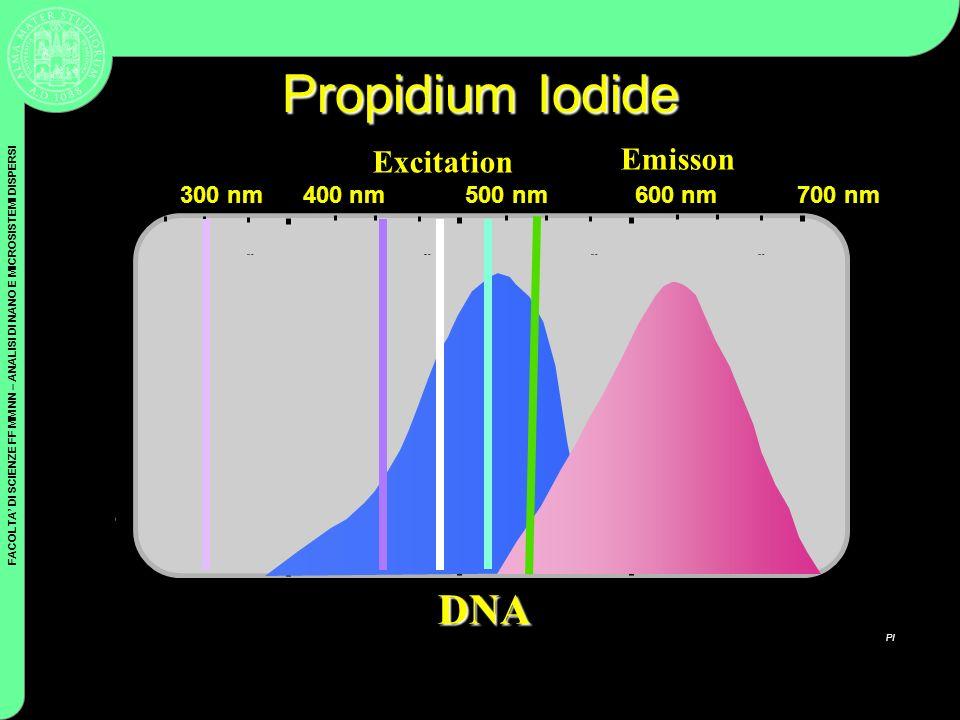 FACOLTA DI SCIENZE FF MM NN – ANALISI DI NANO E MICROSISTEMI DISPERSI Coulter Cytometry Propidium Iodide 400 nm500 nm600 nm700 nm PI DNA Excitation Em