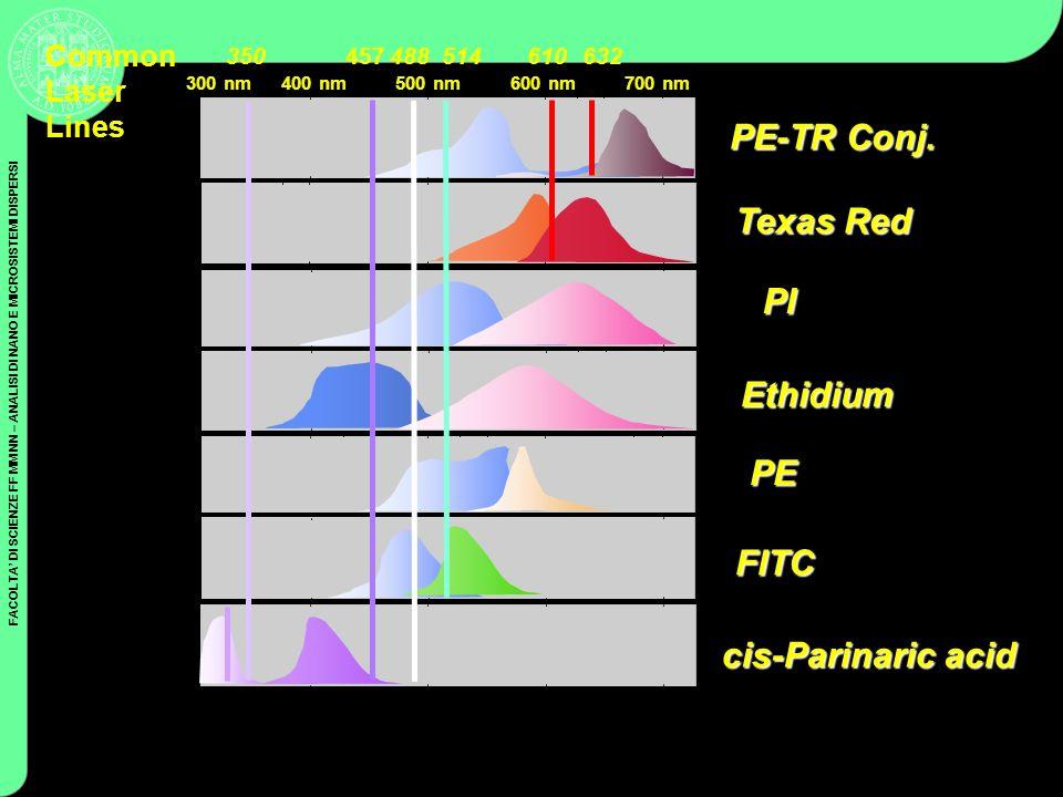 FACOLTA DI SCIENZE FF MM NN – ANALISI DI NANO E MICROSISTEMI DISPERSI Coulter Cytometry Ethidium PE cis-Parinaric acid Texas Red PE-TR Conj. PI FITC 6