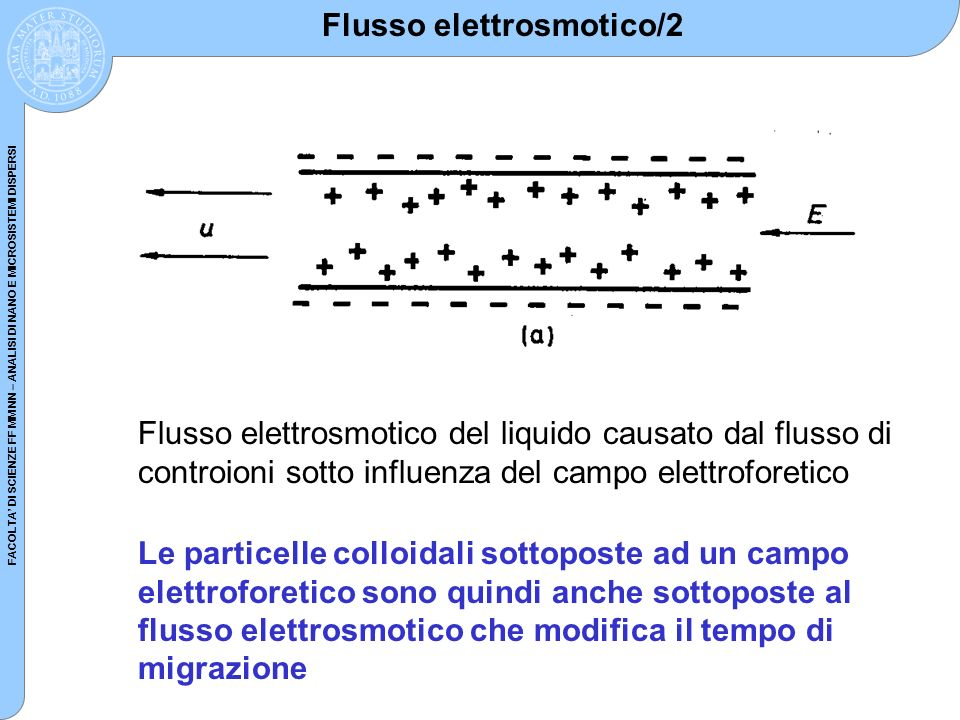 FACOLTA DI SCIENZE FF MM NN – ANALISI DI NANO E MICROSISTEMI DISPERSI Proprietà dei colloidi: 2.
