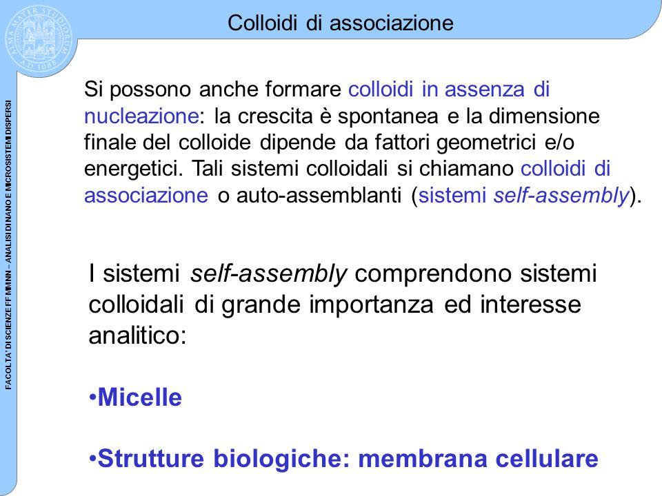 FACOLTA DI SCIENZE FF MM NN – ANALISI DI NANO E MICROSISTEMI DISPERSI Colloidi di associazione I sistemi self-assembly comprendono sistemi colloidali