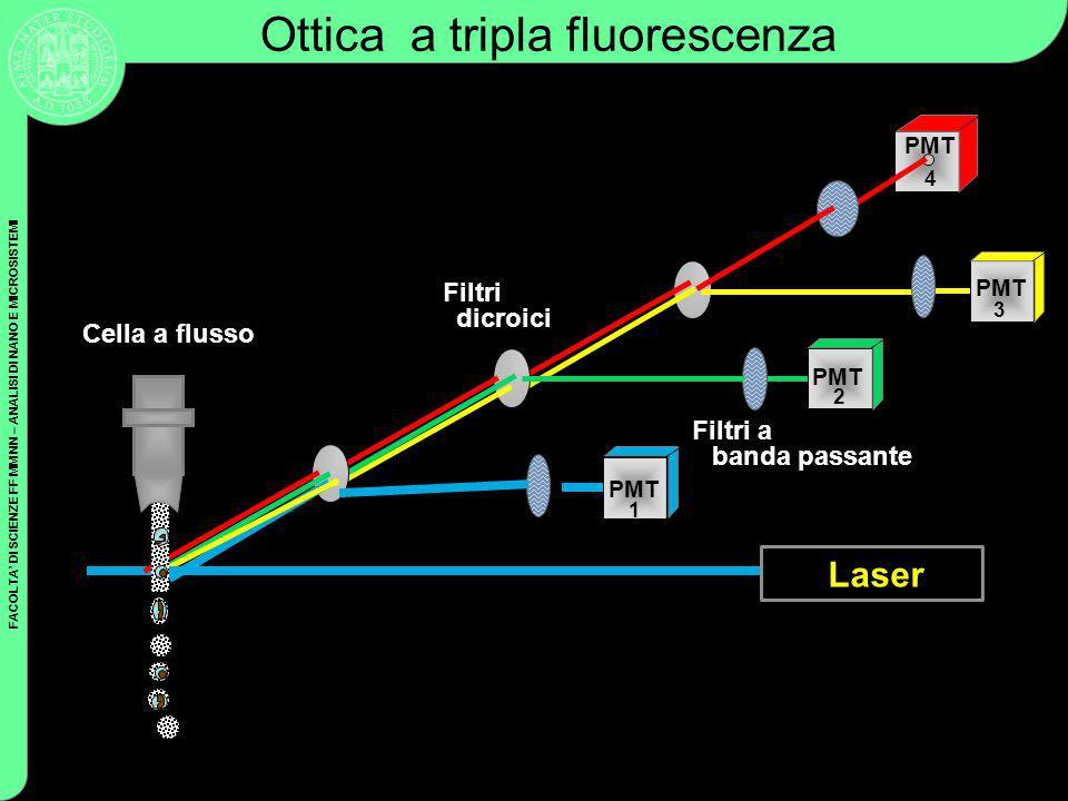 FACOLTA DI SCIENZE FF MM NN – ANALISI DI NANO E MICROSISTEMI Coulter Cytometry PMT Filtri dicroici Filtri a banda passante Ottica a tripla fluorescenz