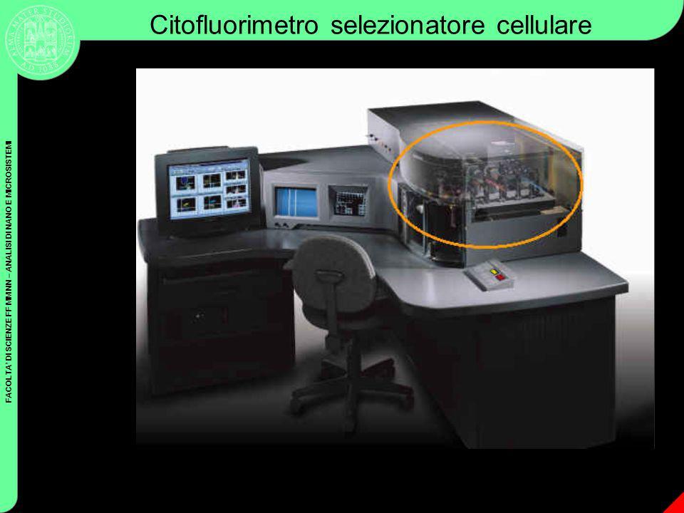 FACOLTA DI SCIENZE FF MM NN – ANALISI DI NANO E MICROSISTEMI Coulter Cytometry Citofluorimetro selezionatore cellulare