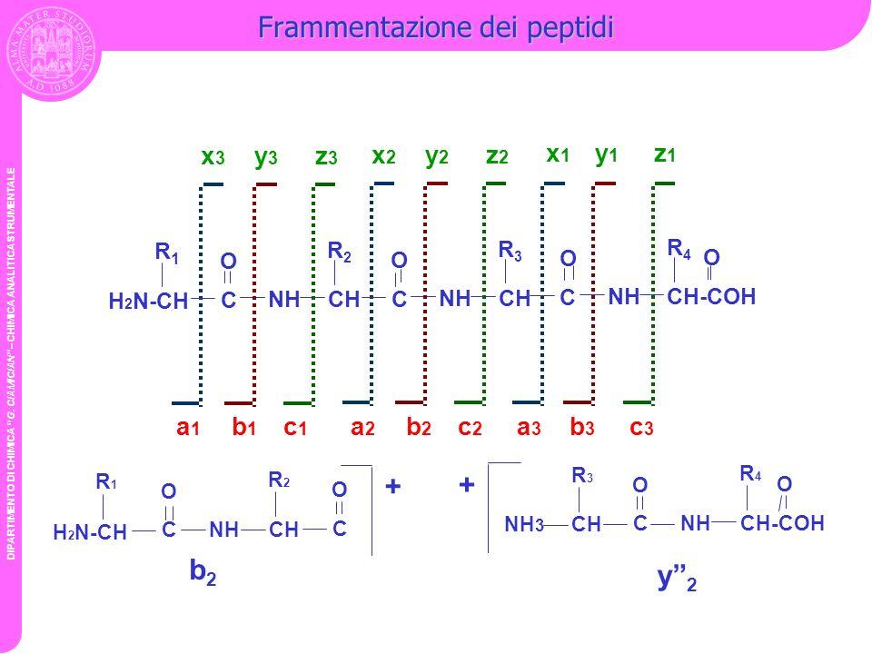DIPARTIMENTO DI CHIMICA G. CIAMICIAN – CHIMICA ANALITICA STRUMENTALE Frammentazione dei peptidi H 2 N-CH R1R1 C NHCH R3R3 O x2x2 y2y2 z2z2 x1x1 y1y1 z