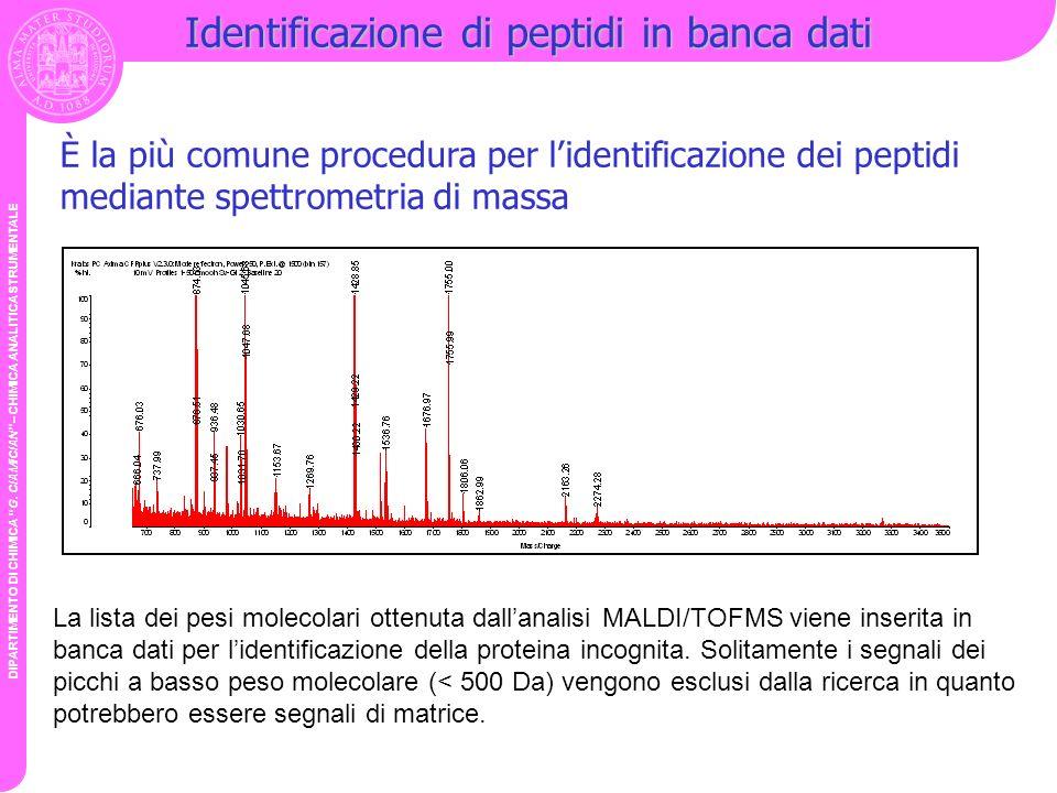 DIPARTIMENTO DI CHIMICA G. CIAMICIAN – CHIMICA ANALITICA STRUMENTALE Identificazione di peptidi in banca dati È la più comune procedura per lidentific