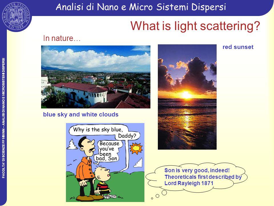 FACOLTA DI SCIENZE FF MM NN – ANALISI DI NANO E MICROSISTEMI DISPERSI Analisi di Nano e Micro Sistemi DispersiMALS Incident light photodiodes Transmitted light