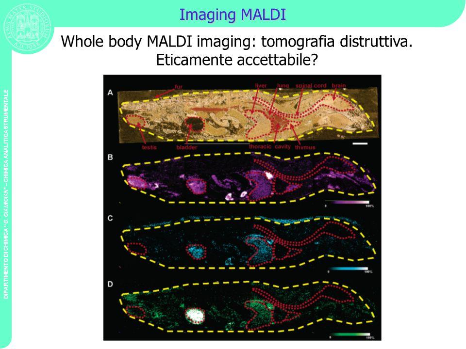 DIPARTIMENTO DI CHIMICA G. CIAMICIAN – CHIMICA ANALITICA STRUMENTALE Imaging MALDI Whole body MALDI imaging: tomografia distruttiva. Eticamente accett