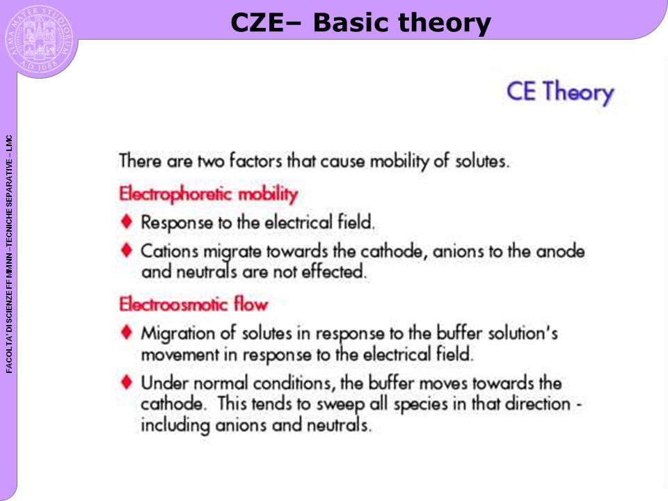 FACOLTA DI SCIENZE FF MM NN –TECNICHE SEPARATIVE – LMC CZE– Basic theory