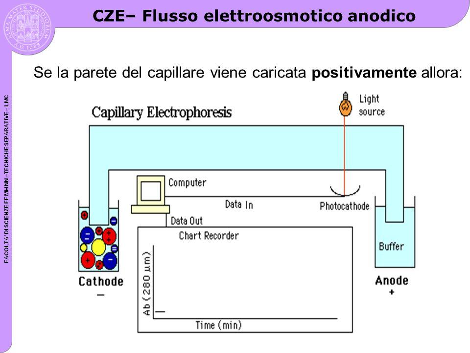 FACOLTA DI SCIENZE FF MM NN –TECNICHE SEPARATIVE – LMC CZE– Flusso elettroosmotico anodico Se la parete del capillare viene caricata positivamente all