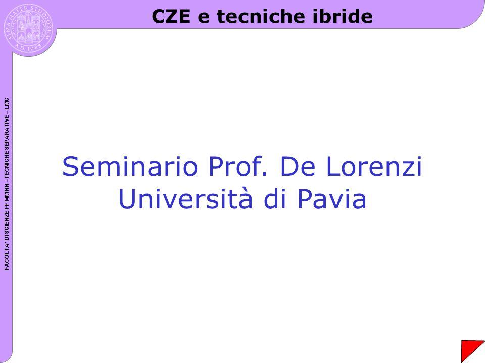 FACOLTA DI SCIENZE FF MM NN –TECNICHE SEPARATIVE – LMC Seminario Prof. De Lorenzi Università di Pavia CZE e tecniche ibride