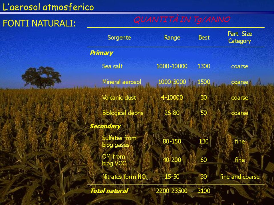 Laerosol atmosferico FONTI NATURALI: QUANTITÀ IN Tg/ANNO