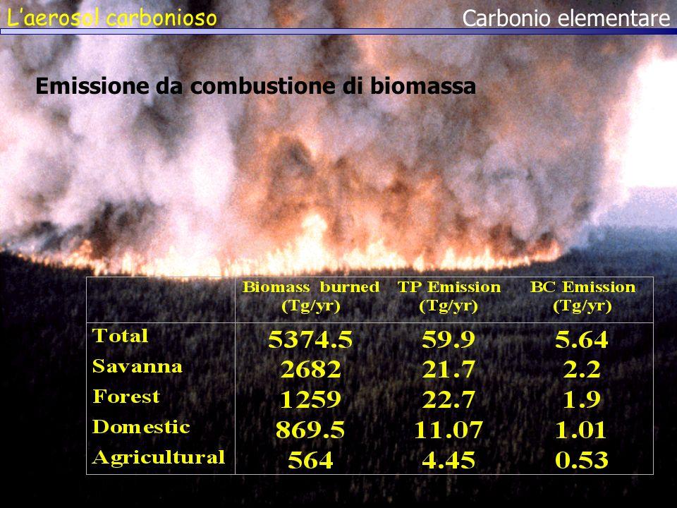 Laerosol carbonioso Carbonio elementare Emissione da combustione di biomassa