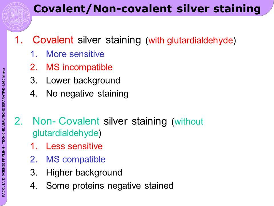 FACOLTA DI SCIENZE FF MM NN – TECNICHE ANALITICHE SEPARATIVE– LM Chimica Covalent/Non-covalent silver staining 1.Covalent silver staining (with glutardialdehyde) 1.More sensitive 2.MS incompatible 3.Lower background 4.No negative staining 2.Non- Covalent silver staining (without glutardialdehyde) 1.Less sensitive 2.MS compatible 3.Higher background 4.Some proteins negative stained