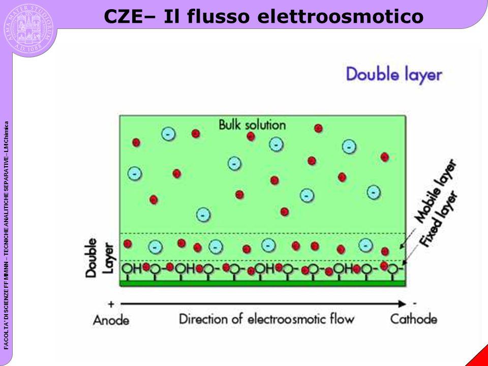 FACOLTA DI SCIENZE FF MM NN – TECNICHE ANALITICHE SEPARATIVE– LM Chimica CZE– Il flusso elettroosmotico