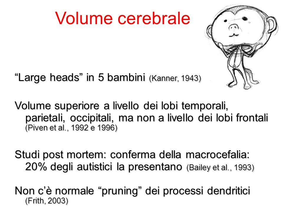 Brain - Behaviour Fenotipi cerebrali StrutturaliFunzionali