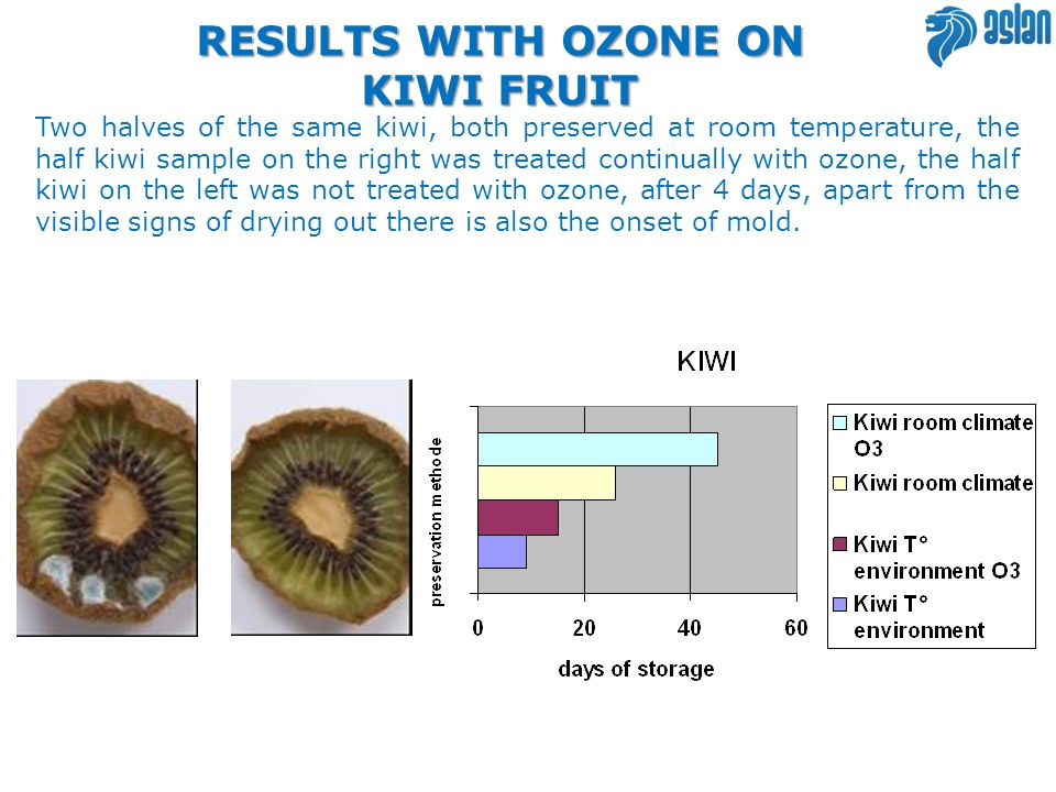 RESULTS WITH OZONE ON KIWI FRUIT Two halves of the same kiwi, both preserved at room temperature, the half kiwi sample on the right was treated contin