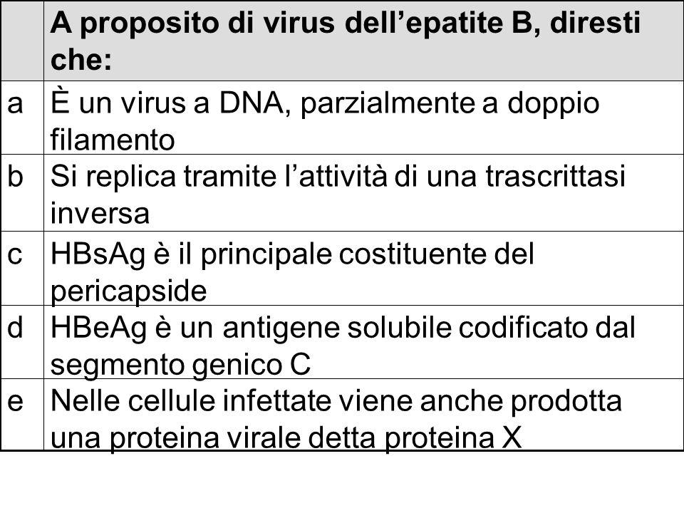 Chiederesti al laboratorio la ricerca degli anticorpi verso HBcAg e Chiederesti al laboratorio la ricerca di HBsAg d Chiederesti al laboratorio la ricerca di HBsAg nel plasma con la microscopia elettronica c Chiederesti al laboratorio la ricerca del DNA virale nel plasma tramite PCR b Ti baseresti su dati epidemiologici a Per fare diagnosi di epatite B