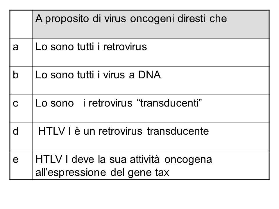 A proposito di virus oncogeni diresti che aIl virus di Epstein Barr può causare linfomi bLoncogenicità dei virus a DNA è legata allattività di alcune proteine precoci cLe proteine E6 ed E7 dei papillomavirus bloccano lattività della p53 e della pRb dI papillomavirus si replicano nelle cellule dello strato basale dellepidermide eNel virus SV40 la proteina oncogena principale è lantigene T
