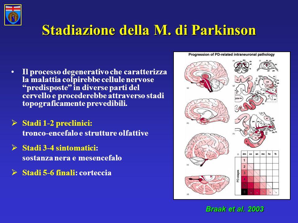 Stadiazione della M.